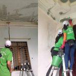 Dịch vụ tẩy mốc nhà và vệ sinh nhà sạch