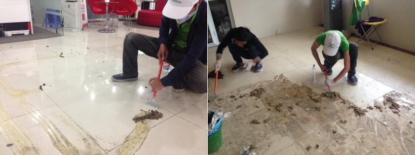 Làm sạch keo dán thảm