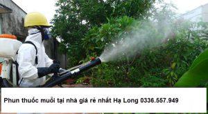 Phun thuốc muỗi tại Hạ Long uy tín